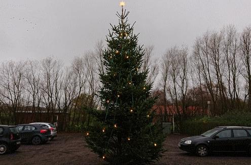 Så stråler årets juletræ i Kvanløse