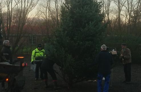 Juletræ 2020 ved at komme på plads i Kvanløse